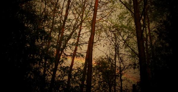 Sunset rainbows